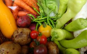 100%固定種・野菜セット(4回分)+新米5キロセット