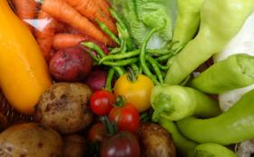 100%固定種・野菜セット(6回分)+新米5キロセット