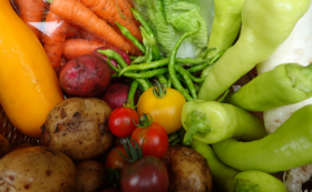 100%固定種・野菜セット(8回分)+新米5キロセット