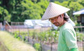 多田があなたの畑で自然栽培をレクチャーします券