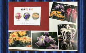 松阪三珍花ポストカードをお送りします。