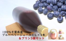 「千葉の味」フルーツプリン3個+100%ブルーベリージュース1L 3本