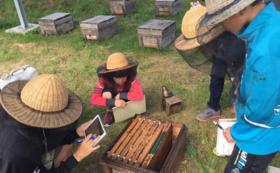 北海道オホーツクの養蜂場にご招待