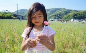 【全力応援コース】田んぼをつかった花畑の開催継続を願って。