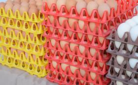 平飼い卵20個の農場引換券