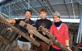 〜私たちが栽培したマルハチ椎茸500g+お米10kg+公式HP・パッケージに名前もしくは企業名掲載〜