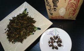 【限定5名様】50日発酵の阿波晩茶&福玉茶&棚田米1kg