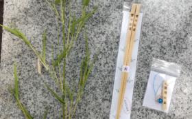 熊野の橋渡し(竹箸)1膳+熊野の守(ストラップ)1個セット