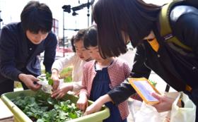 秋の収穫祭にご招待!コース