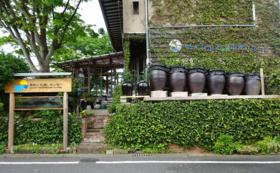 樋井川流域ツアーに参加する