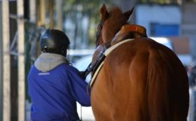 【Readyfor限定】命が繋がった馬の馬主風バッジ(黒)