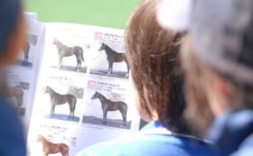 【Readyfor限定】命が繋がった馬の馬主風バッチ(シルバー)