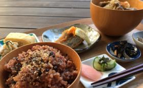 お食事券とさらに無農薬玄米のコース