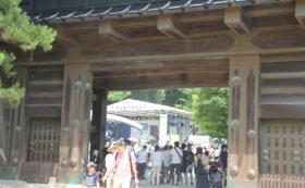 土佐風土祭りスポンサーコース