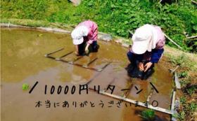 【小代には行けないけど…という方】俺たちの武勇田米3キロ