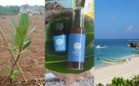 ヤラブの木3本植樹、来島時の体験チケット、池間島産タマヌオイル 100%ピュアオイルとマッサージオイルのセット