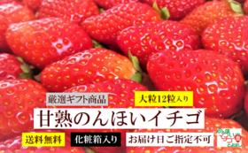【食べて応援】甘熟のんほいイチゴ1箱