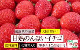 【食べて応援】甘熟のんほいイチゴ2箱