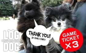 イベントを楽しもう!愛犬と遊べるゲーム3回券