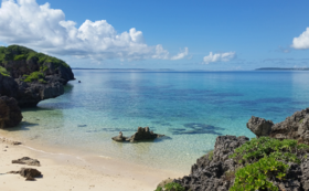 ヤラブの木10本植樹、来島時の宿泊ご招待&体験チケット、池間島産タマヌオイル 100%ピュアオイルとマッサージオイルのセット