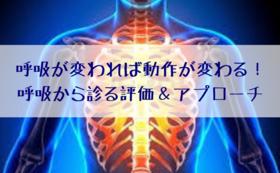 セラピスト向けセミナーコース【田原大二郎さんコラボ】