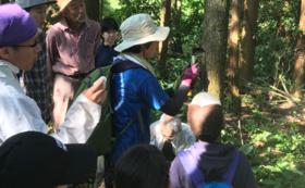 福島で「森のワークショップ」に参加しよう!