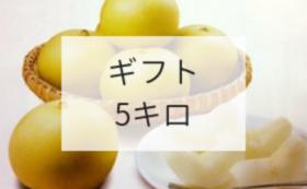 【魅力をギフトで!コース】21世紀梨ギフト5キロ(12000円相当)