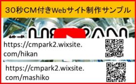 【クラウドファンディング限定価格】30秒CM付きスマホ対応Webサイト制作