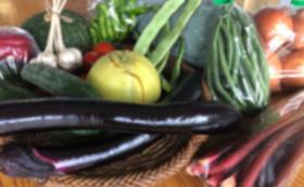 5, 季節のお野菜セット