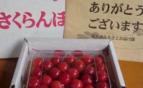 選べる旬の味覚!湯沢の特産品(米・果物・野菜など)を1品お届け!