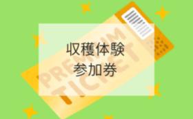 【魅力を体験で!コース】2019年度産21世紀梨収穫体験券2枚