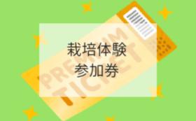 【魅力を体験で!コース】2019年度産21世紀梨栽培体験券2枚