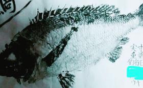 お礼状+鱗を使った小物+魚拓(もしくは報告書)
