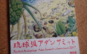 琉球弧アダンサミット2018の招待券セット