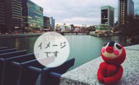 旅するあみぐるみ(パリ編)の写真本をお贈りします!