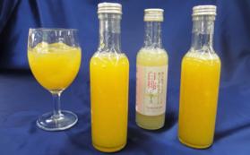 黄金桃ジュース・白桃ジュース+半額入園チケットセット
