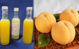 黄金桃ジュース・白桃ジュース・黄金桃+半額入園チケットセット