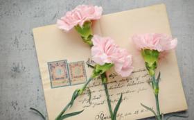 感謝のお手紙をお送りさせていただきます。