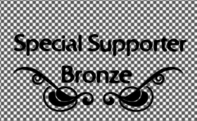 Special supporter Bronze