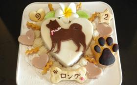 オリジナル犬用ケーキコース