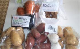 「自然栽培ただし〜農園」無農薬・無肥料 2019年野菜収穫基本セット