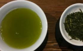 【菊川の新茶をお手軽に】新茶水出しボトルセット