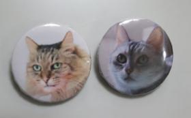 保護猫カフェ利用券3回分(時間無制限)+カフェ猫バッジ