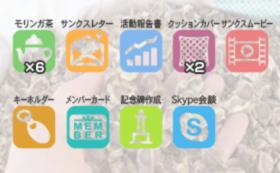 モリンガ茶6袋+記念碑+Skype会談