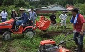 無肥料・無農薬の自然栽培農法の収穫報告書