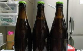 澄川麦酒・瓶ビール(非売品)10本をクール便でお届け