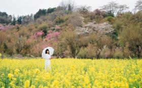 【先着5組限定!】横田裕市氏が撮るあなただけの風景ポートレート撮影