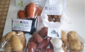 「自然栽培ただし〜農園」無農薬・無肥料 2019年野菜収穫沢山セット