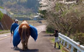リトルプレス「馬と暮らす」&加工品セット