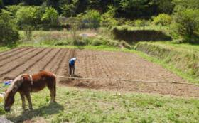 リトルプレス「馬と暮らす」&加工品セット&はたらく馬との日常体験!